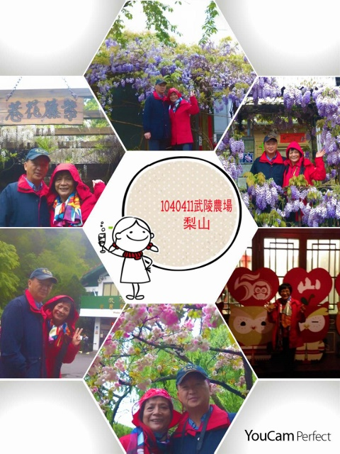 10410411(D2-1)武陵農場、梨山賓館宿:2015-04-11-20-54-00-728 (480x640).jpg