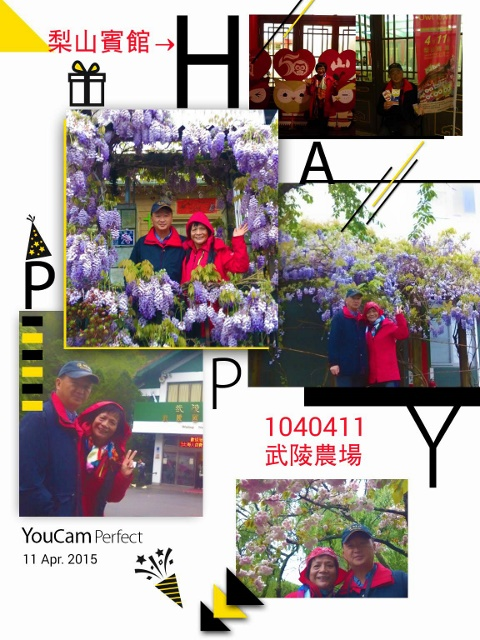 10410411(D2-1)武陵農場、梨山賓館宿:2015-04-11-20-57-43-130 (480x640).jpg