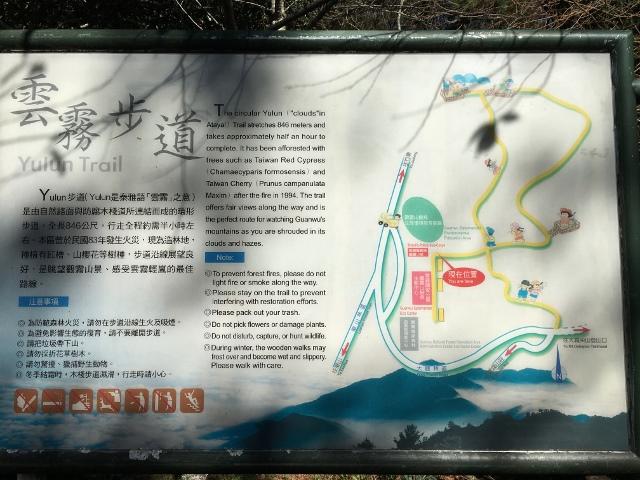 IMG_1878 (640x480).jpg - 1051218(D2-2)(日)觀霧國家森林遊樂區-雲霧、榛山步道