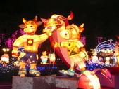 2009台灣燈會(宜蘭):kkkkkkk 158.jpg