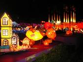 2009台灣燈會(宜蘭):kkkkkkk 159.jpg