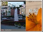 Xuite活動投稿相簿:黃昏