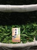 2013年春茶採買紀錄:IMG_0396.JPG