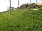 2013年春茶採買紀錄:IMG_0352.JPG