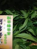 2013年春茶採買紀錄:IMG_0397.JPG