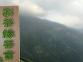 2013年春茶採買紀錄:IMG_0363.JPG