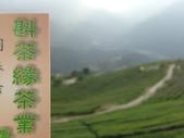 2013年春茶採買紀錄:IMG_0360.JPG