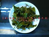 【斟茶緣】2015年馬烈霸冬茶冬茶(10/29採收):7.jpg