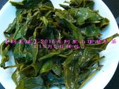 【斟茶緣】2015年阿里山頂湖冬茶(11月5日採收):8.jpg