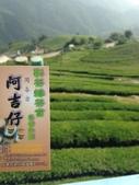 2013年春茶採買紀錄:IMG_0340.JPG