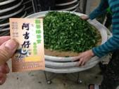 2013年春茶採買紀錄:IMG_0507.JPG