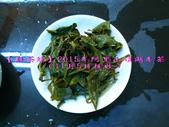 【斟茶緣】2015年阿里山頂湖冬茶(11月5日採收):7.jpg