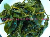 【斟茶緣】2015年華崗冬茶(10月27日採收):8.jpg