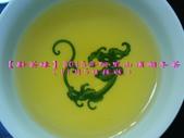【斟茶緣】2015年阿里山頂湖冬茶(11月5日採收):6.jpg