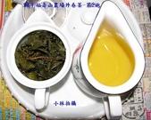 2009福壽山農場外春茶:茶友試喝報告