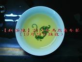 【斟茶緣】2015年馬烈霸冬茶冬茶(10/29採收):5.jpg