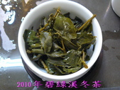2010年碧綠溪冬茶:2010年碧綠溪冬茶