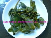 2013年松岡冬茶(11月5日採製):6.jpg
