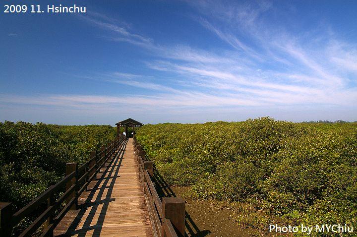 紅樹林保護區:1160031082.jpg