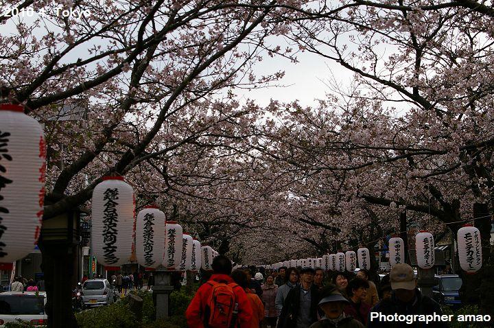 東京第五天:1807143645.jpg
