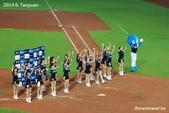 2014中華職棒G117桃猿vs兄弟象:IMG_6852.jpg