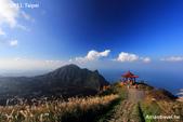 金瓜石茶壺山:IMG_3402.jpg