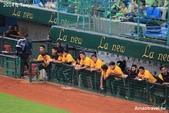 2014中華職棒G117桃猿vs兄弟象:IMG_6656.jpg