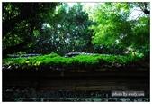 齊東街日式住宅:DSC_0014.jpg
