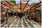 新埔-味衛佳柿餅:DSC_0045.jpg