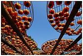 新埔-味衛佳柿餅:DSC_0046.jpg