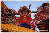 新埔-味衛佳柿餅:DSC_0070.jpg