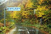 日本東北賞楓下:DSC09448-.jpg