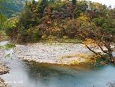 合掌村與金澤城:DSC_2918白川鄉合掌村p.jpg
