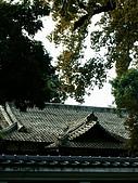 浮生散見:嘉義日本神社原址旁