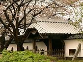 合掌村與金澤城:267金澤城~.jpg