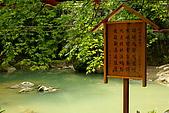 花中之王牡丹花-驚豔杉林溪:DSC01168+.JPG