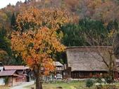合掌村與金澤城:DSC_2894白川鄉合掌村p.jpg