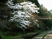 合掌村與金澤城:154金澤途中~.jpg