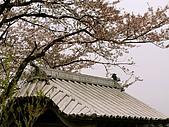合掌村與金澤城:268金澤城~.jpg