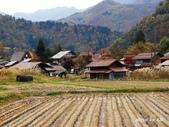 合掌村與金澤城:DSC_2822白川鄉合掌村p.jpg
