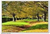 2018 基督城海格利公園:DSC_0732