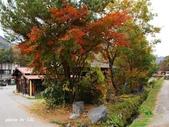 合掌村與金澤城:DSC_2846白川鄉合掌村p.jpg