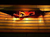 2006台灣燈會:窗外