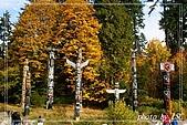 金秋加拿大1-溫哥華:史坦利公園