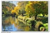 2018 基督城海格利公園:DSC_1055.