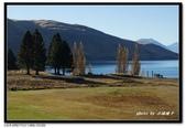 紐西蘭˙人間仙境蒂卡波湖(Lake Tekapo) :DSC01194.jpg