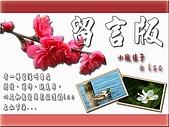LSC&小城綾子的留言版:LSC&小城綾子的留言版