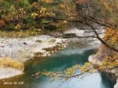 合掌村與金澤城:DSC_2906白川鄉合掌村p.jpg