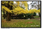 基督城海格利公園:DSC07794~.jpg