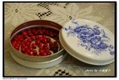 美麗人生:新收集的孔雀豆